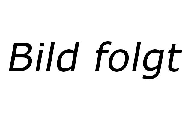 Friedhelm Pauen